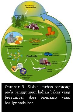 Siklus karbon tertutup pada penggunaan bahan bakar yang bersumber dari biomassa yang berlignoselulosa